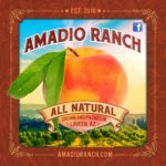 Amadio Ranch is a Laveen-based, organic family farm.