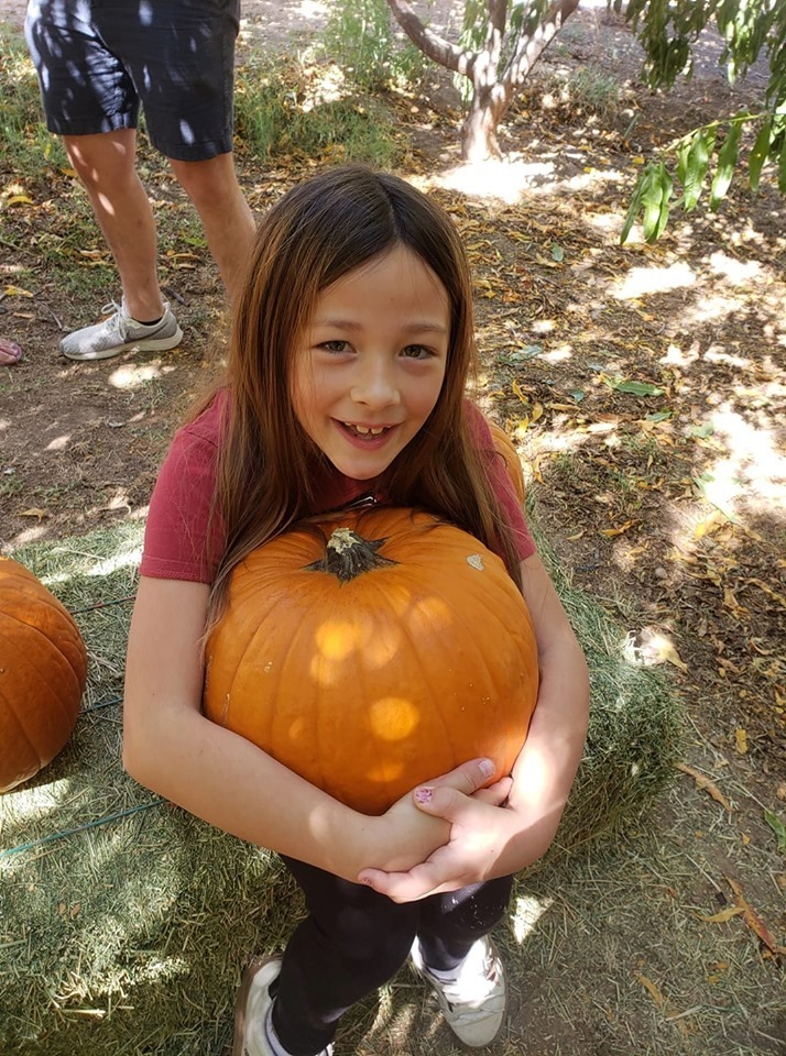 Pumpkin Patch at Amadio Ranch open all October.